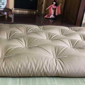 plain beige shiki