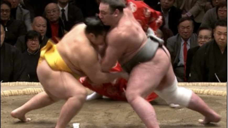 Tochinoshin wins Grand Sumo